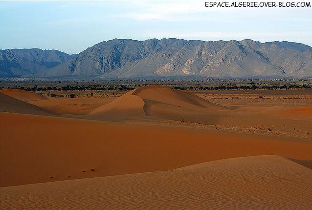 Le grand sahara algerien