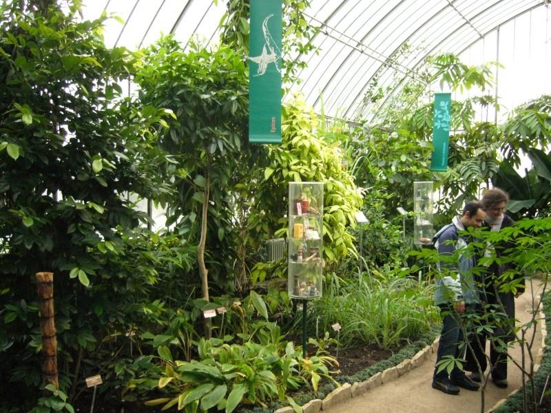 Jardin botanique de geneve for Jardin botanique geneve