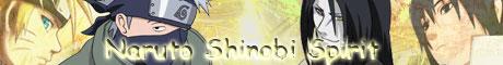Naruto Shinobi Spirite