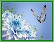 http://i71.servimg.com/u/f71/12/55/10/92/31uo_b10.jpg