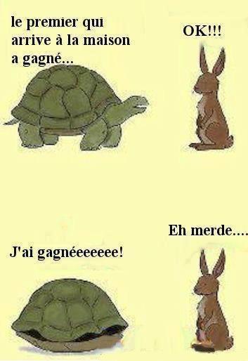 Petite image rigolotte - Dessin du lievre et de la tortue ...