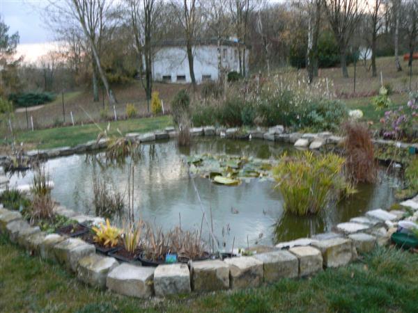 Bassin de jardin sans filtration bassin de jardin for Filtration de bassin