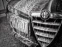 Coccole per le nostre Alfa Romeo