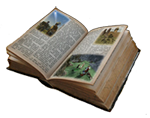 Lore Library