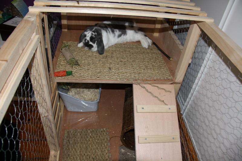 Am nager un enclos int rieur pour mon loulou page 2 for Enclos lapin interieur