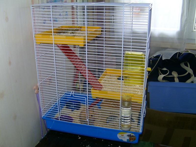 nouvelle grande cage pour ma hamster. Black Bedroom Furniture Sets. Home Design Ideas