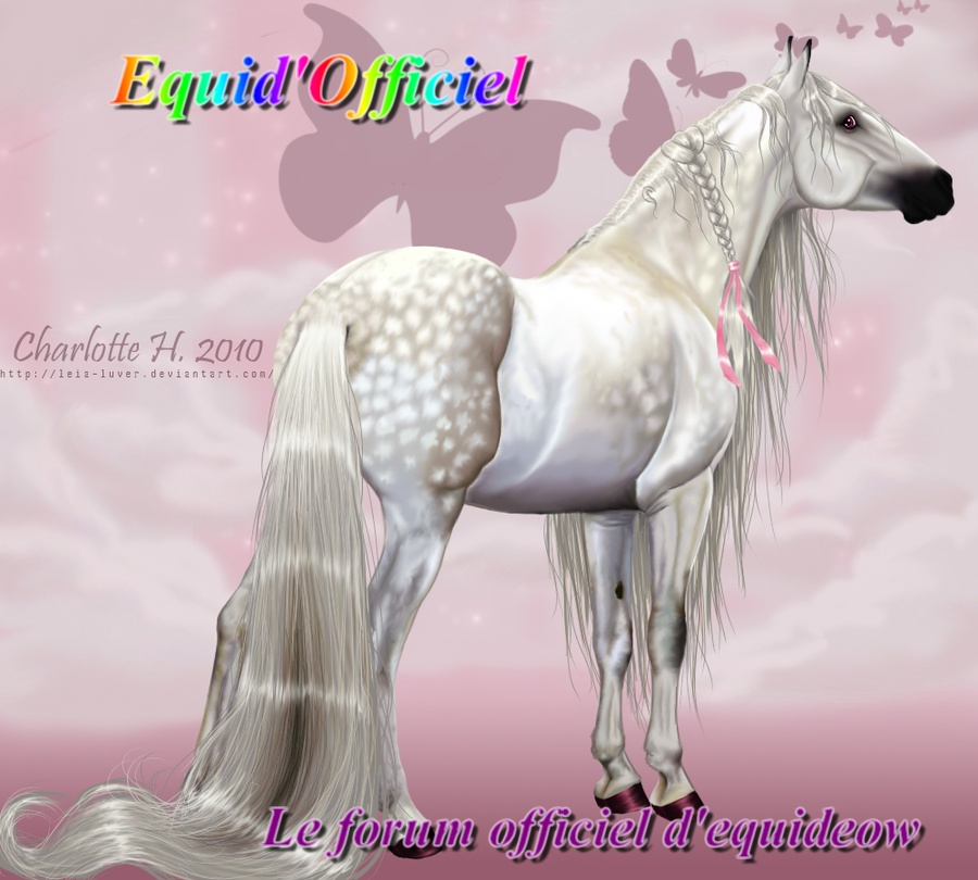 Equid'Officiel