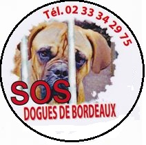 <span style=font-size: 24px><font color=darkblue>SOS DOGUES DE BORDEAUX</font></span>