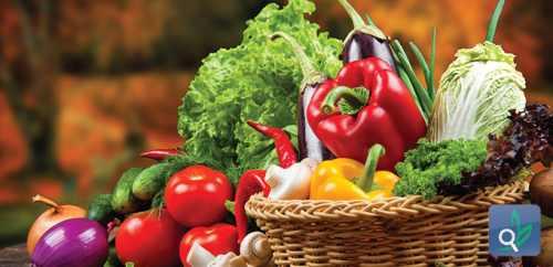 النظام الغذائى المتكامل للجســــم