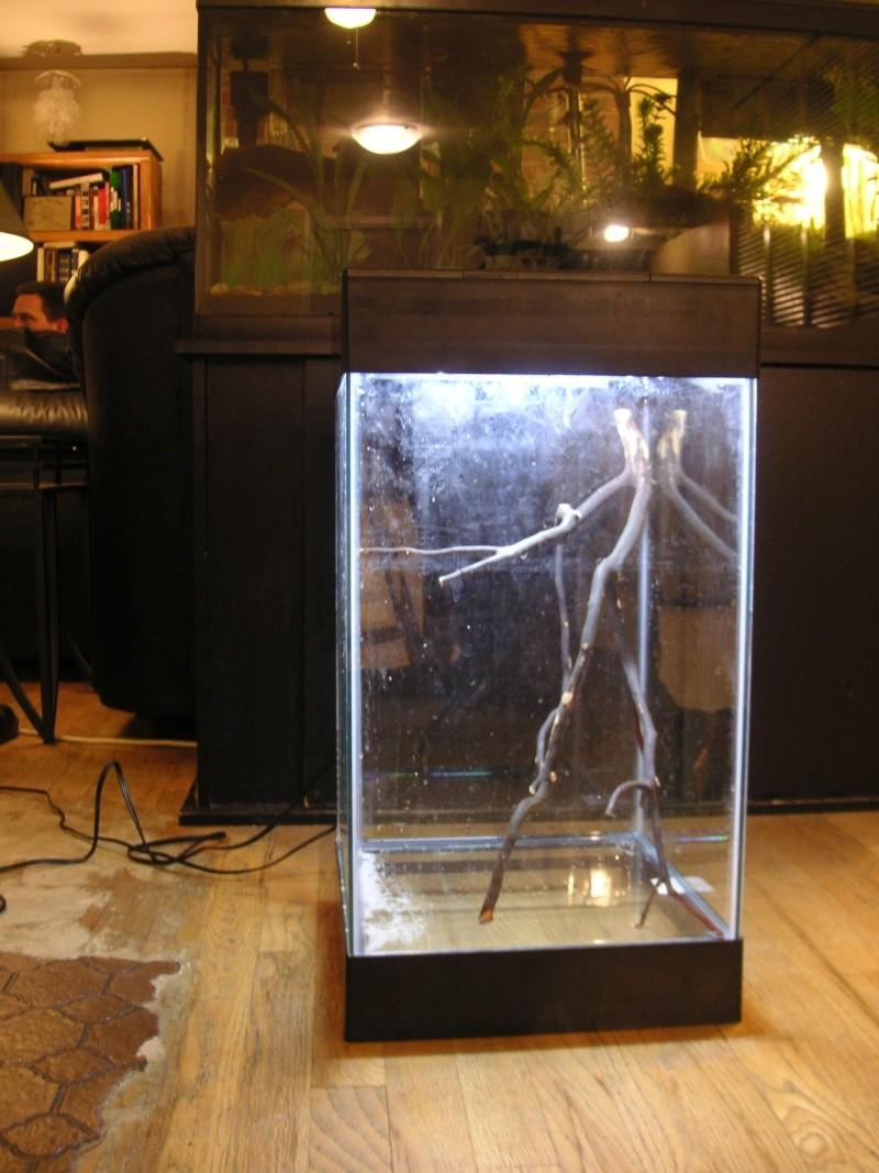 Aqueon 15 gallon column aquarium 1000 aquarium ideas for 15 gallon fish tank stand