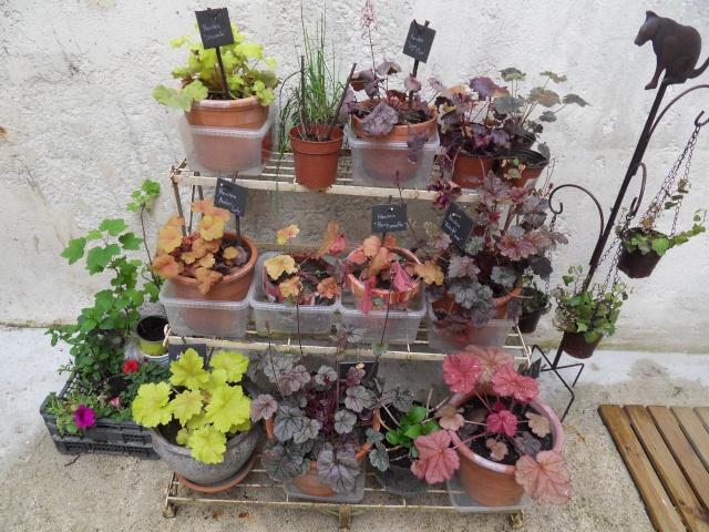 D capage tag re plante for Etageres plantes exterieur
