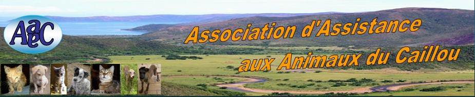 Association d'Assistance aux Animaux du Caillou