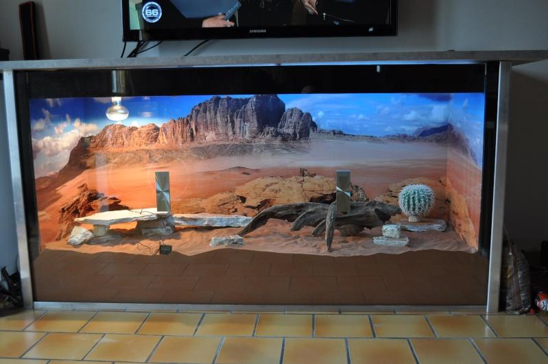 Fabrication terrarium pour pogona for Les meilleurs decors de maison