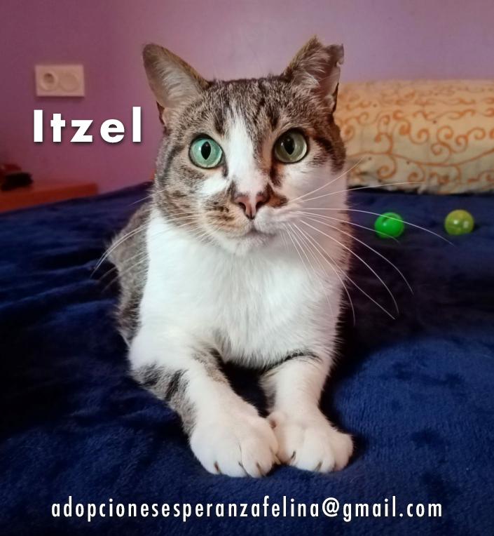 itzel_20.jpg
