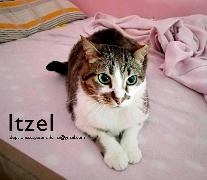 itzel_21.jpg